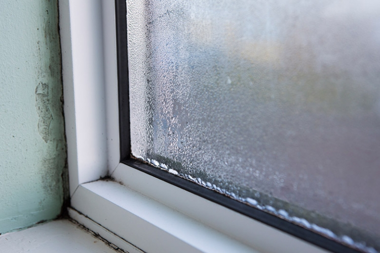 Windows That Keep Moisture Out