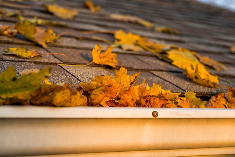 An autumn roof inspection can help protect your roof all winter