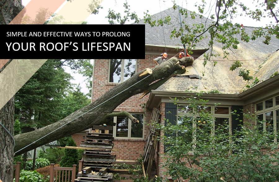 Simple and Effective Ways to Prolong Your Roof's Lifespan
