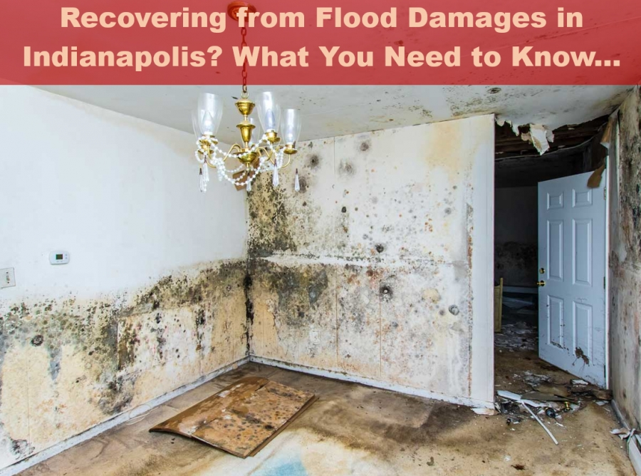 Recovering From Flood Damages In Indianapolis? What You Need To Know...